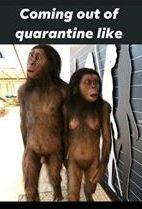 funny coronavirus meme, cavemen coronavirus meme, caveman coronavirus meme