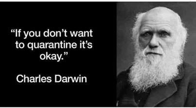 funny coronavirus meme, charles darwin coronavirus meme