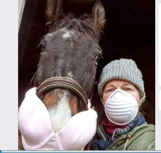 funny coronavirus meme, horse coronavirus meme