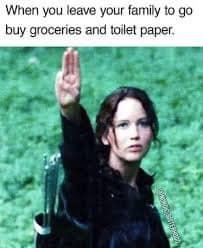 funny coronavirus meme, hunger games coronavirus meme, toilet paper coronavirus meme, grocery coronavirus meme