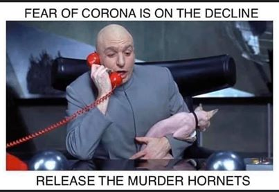 funny coronavirus meme, dr. evil coronavirus meme, austin powers coronavirus meme, mike meyers coronavirus meme, murder hornets coronavirus meme